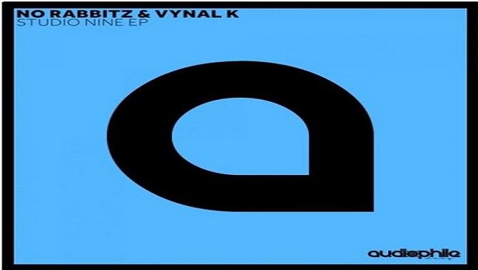 vynal2