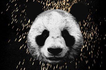 desiigner-panda