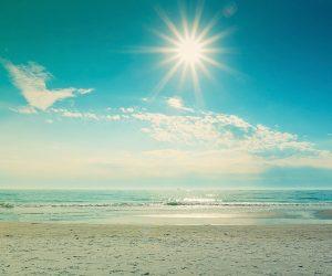 495253-beauty-summer-sun