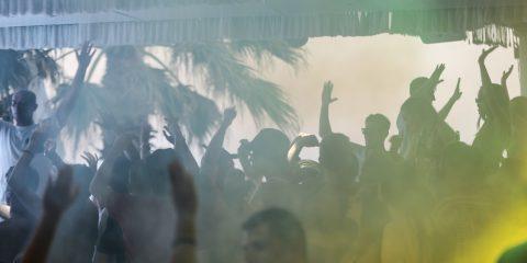 tropicana vibes
